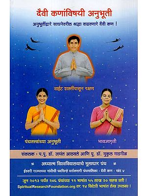 दैवी कणांविषयी अनुभूती: Feelings about Divine Particles (Marathi)
