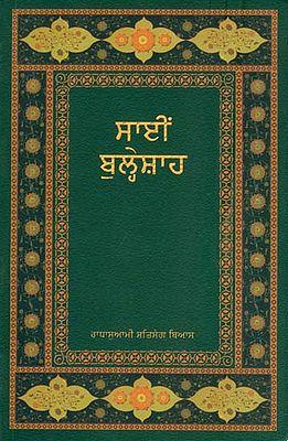 ਸਾਇਂ ਥੁਲ੍ਹੋਸ਼ਾਹ: Sain Bulleh Shah (Punjabi)
