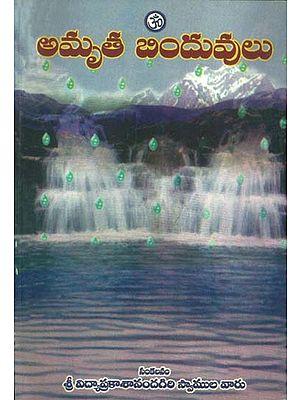 ఆమృతే బిందువ్రేలు: Drops of Nectar (Telugu)