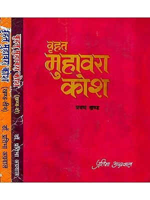 वृहत् मुहावरा कोश: Dictionary of Brihat Idiom -  An Old and Rare Book (Set of 3 Volumes)