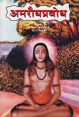अमरौघप्रबोध - Amaraugha Prabodha (Marathhi)