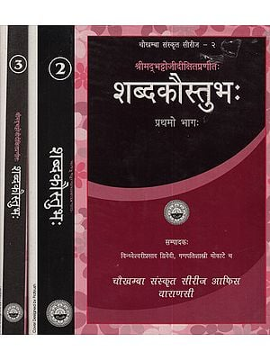 शब्दकौस्तुभ - Shabda Kaustubha (Set of 3 Volumes)
