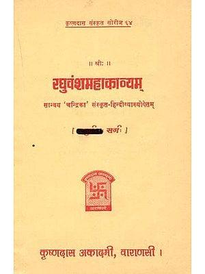 रघुवंशमहाकाव्यम् (त्रयोदश सर्ग) - Raghuvansa Mahakavyam- Canto - 13 (An old and Rare Book)