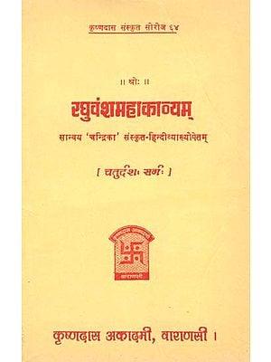 रघुवंशमहाकाव्यम् (चतुर्दश सर्ग) - Raghuvansa Mahakavyam- Canto- 14 (An Old and Rare Book)