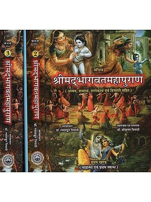 श्रीमा्दभागवतमहापुराण- Shrimad Bhagawat Mahapurana (Set of 3 Volumes)