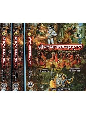 श्रीमा्दभागवतमहापुराण- Shrimad Bhagawat Mahapurana (Set of 3 Volumes)