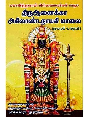 Thirunaika Akilandanayaki Evening (Tamil)