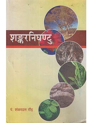 शंकरनिघण्टु - Shankar Nighantu (An Old Book)