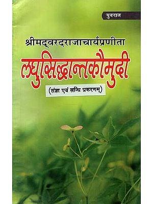 लघुसिद्धान्तकौमुदी (संज्ञा एवं संधि प्रकरणम्) : Laghu Siddhanta Kaumudi (Noun and Treaty Case)