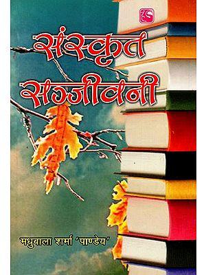 संस्कृत सञ्जीवनी - Sanskrit Sanjivani