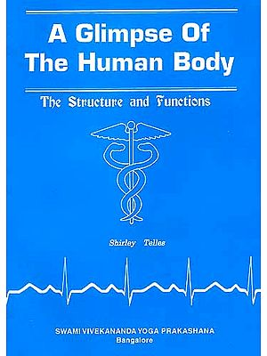 A Glimpse Of The Human Body: The Structure and Functions