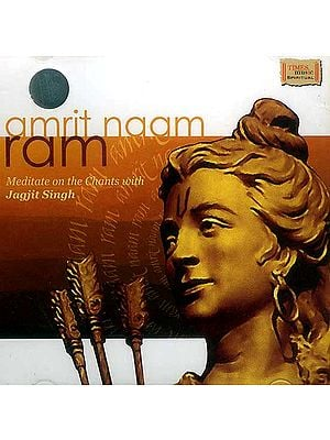 Amrit Naam Ram: Meditate on the Chants with Jagjit Singh (Audio CD)
