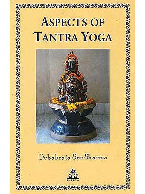 Aspects of Tantra Yoga