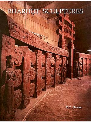 BHARHUT SCULPTURES