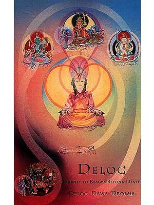 Delog: Journey to Realms Beyond Death