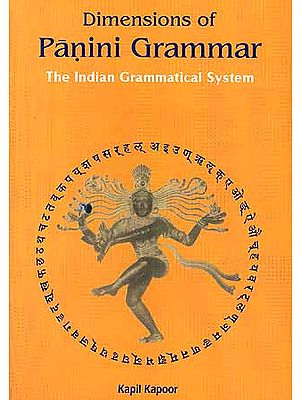 Dimensions of Panini Grammar: The Indian Grammatical System