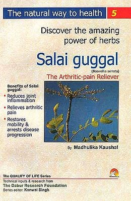 Discover the amazing powers of herbs: Salai guggal (Boswellia Serrata) The Arthritic-Pain Reliever