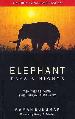 Elephant Days and Nights