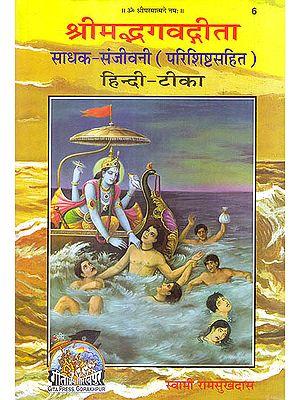 श्रीमद्भगवद् गीता (साधक हिन्दी टीका)  Shrimad Bhagawad Gita (With Sadhaka Sanjeevani Commentary by Swami Ramsukhdas)