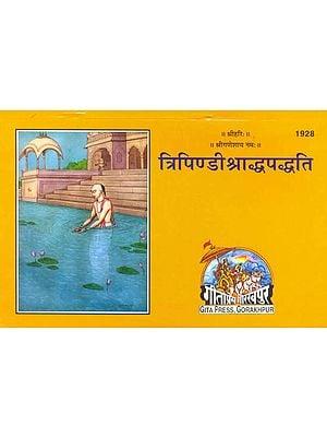 त्रिपिण्डीश्राध्दपध्द्ति (संस्कृत एवम् हिन्दी अनुवाद) - Tripindi Sraddha Paddhati
