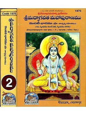 శ్రిమద్భాగావాట్మహాపురణము: Srimad Bhagavat Mahapurana in Telugu (Set of 2 Volumes)