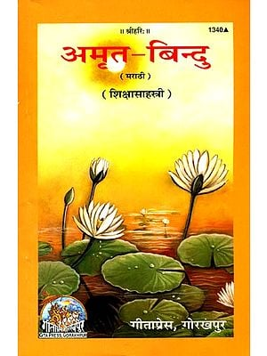 अमृत बिन्दु: Thousand Teaching of Swami Ramsukhdas (Marathi)
