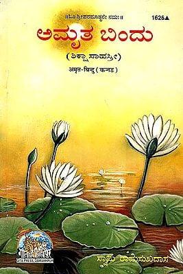 ಅಮ್ರಿತ್ ಬಿಂದು: Thousand Teaching of Swami Ramsukhdas (Kannada)