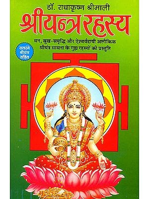 श्रीयन्त्र रहस्य (धन, सुख-समृध्दि और एश्वर्यदायी अलौकिक यन्त्र) - Secrets of Shri Yantra