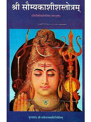 श्री सौम्यकाशीशस्तोत्रम्: Sri Saumya Kashisha Stotram