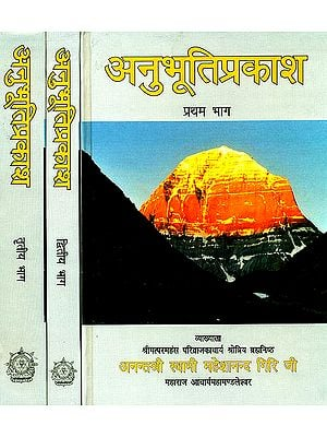 अनुभूति प्रकाश: Discourses on the Twelve Upanishads (Set of 3 Volumes)