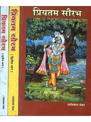 प्रियतम सौरभ: Explanation of Radha Baba's Poems (Set of 3 Volumes)