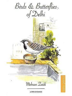 Birds and Butterflies of Delhi