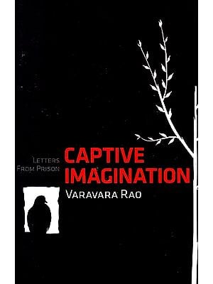 Captive Imagination: Letters from Prison