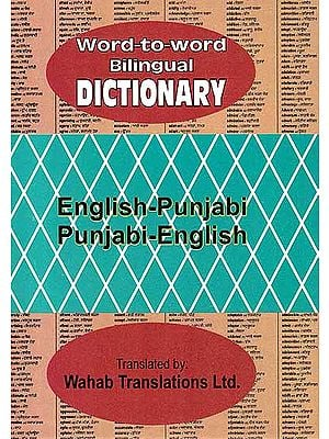 English-Punjabi Punjabi-English (Word-to-Word Bilingual Dictionary)
