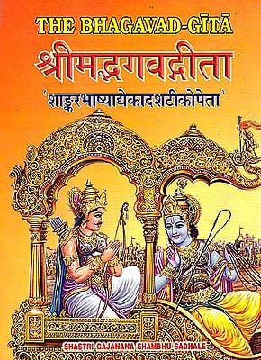 The Bhagavad-Gita with Eleven Commentaries (Sanskrit Only): Three Volumes