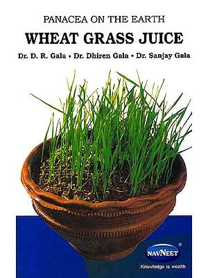 Panacea on the Earth – Wheat Grass Juice