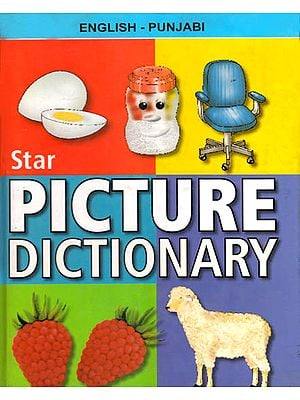 English – Punjabi Picture Dictionary (With Roman)