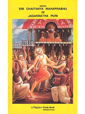 Seeing Sri Chaitanya Mahaprabhu in Jagannatha Puri (A Pilgrim's Guide Book)