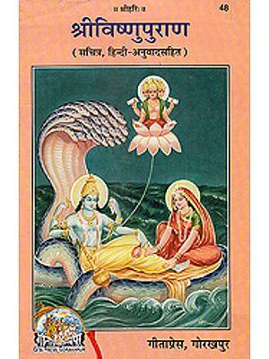 श्री विष्णु पुराण: Shri Vishnu Purana (48)