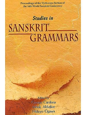 Studies in Sanskrit Grammars: Proceedings of the Vyakarana Section of the 14th World Sanskrit Conference
