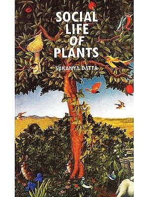 Social Life of Plants