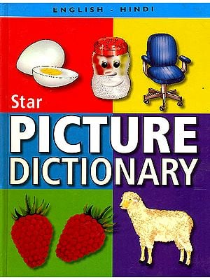 Star Chidren's English-Hindi Picture Dictionary