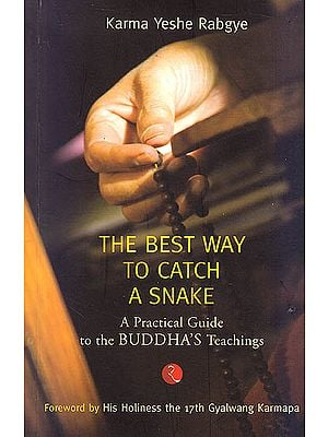 The Best Way To Catch A Snake (A Practical Guide To The Buddha's Teachings)