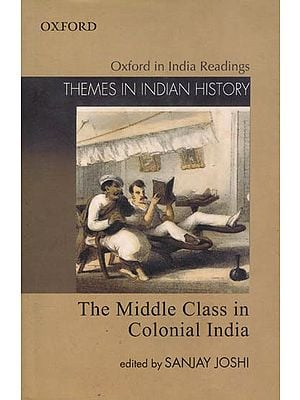 The Middle Class in Colonial India (Themes in Indian History)