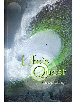 Life Quest (The Journey of Karma, Its Existence..... Inception?. Description and Regulation)