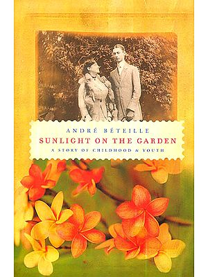Sunlight on The Garden (A Story of Childhood and Youth)