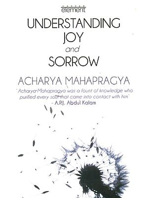 Understanding Joy and Sorrow