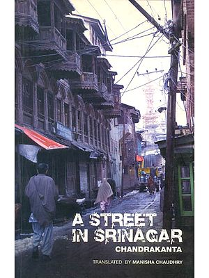 A Street in Srinagar (Chandrakanta)