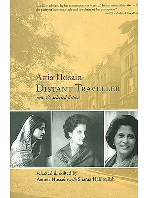 Distant Traveller (New and Selected Fiction)