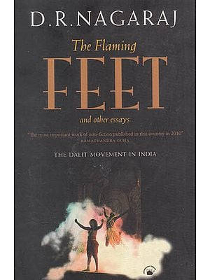 The Flaming Feet and Other Essays (The Dalit Movement in India)